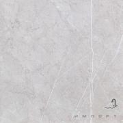 Плитка напольная координированная из керамогранита FAP SUPERNATURAL ARGENTO PAV MATT fJVF