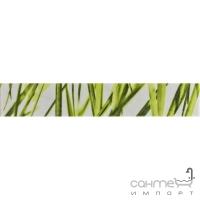 Плитка керамическая фриз Pilch Carrara 2 10x60